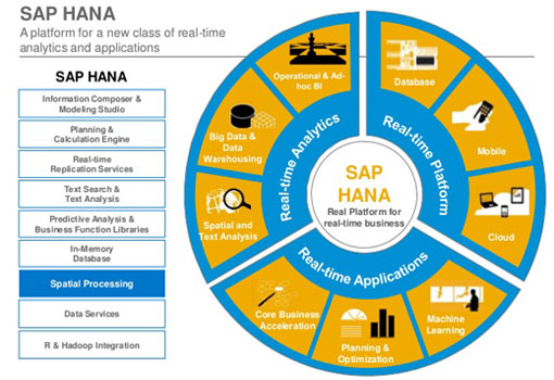 SAP HANA Hosting in India